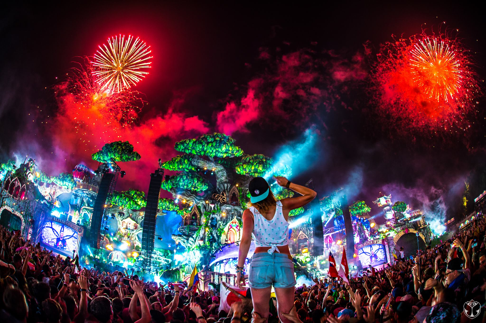In Pictures: Tomorrowl...